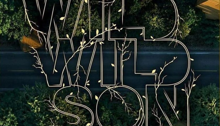 "Armin van Buuren estreno remix de ""Wild Wild Son"" de Sam Martin"